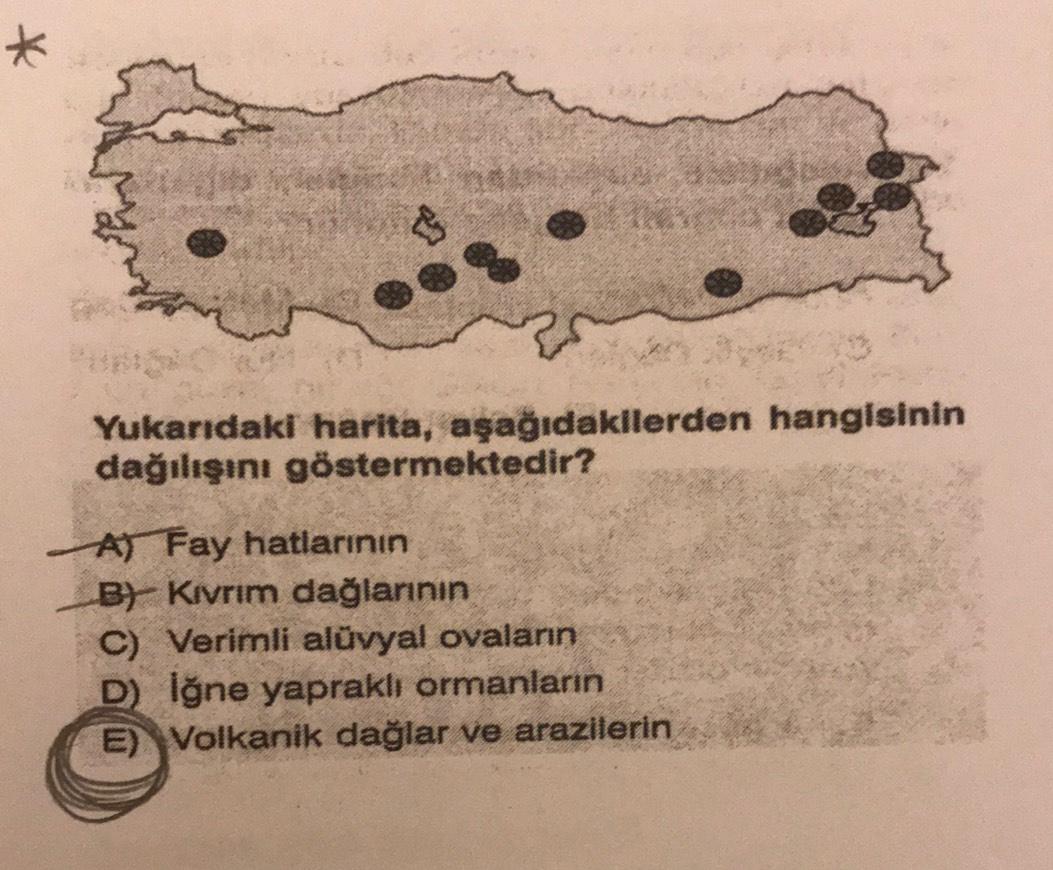 * Yukarıdaki harita, aşağıdakllerden hangisinin dağılışını göstermektedir? A) Fay hatlarının B) Kivrim dağlarının C) Verimli alüvyal ovaların D) lğne yapraklı ormanların E) Volkanik dağlar ve arazilerin