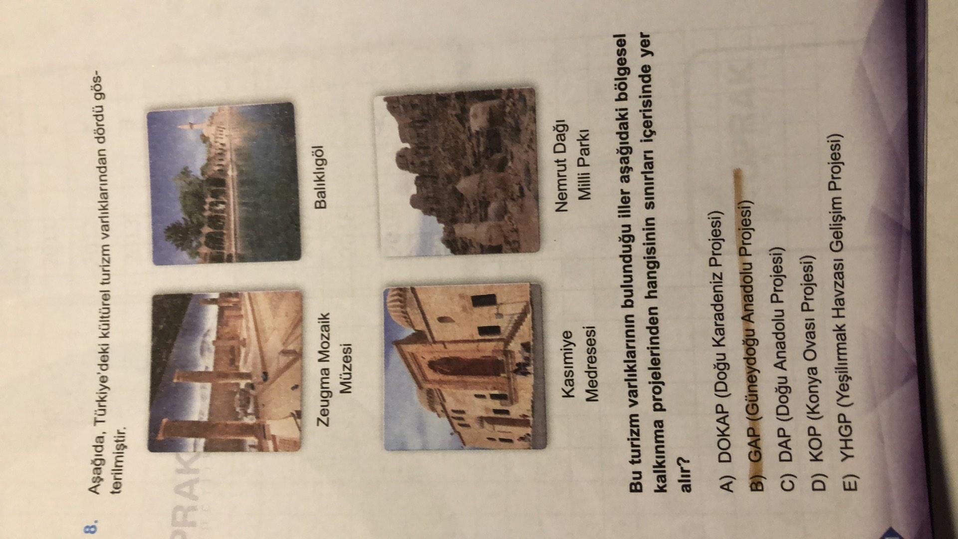 8. Aşağıda, Türkiye'deki kültürel turizm varlıklarından dördü gös- terilmiştir. PRAKE Balıklıgöl Zeugma Mozaik Müzesi 11 Kasımiye Medresesi Nemrut Dağı Milli Parkı Bu turizm varlıklarının bulunduğu iller aşağıdaki bölgesel kalkınma projelerinden hangisinin