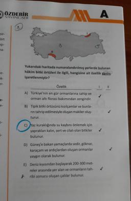 2 ÖZDEBİR A YAYINLARI ALLA 7. bir- ört Eşi- na- Yukarıdaki haritada numaralandırılmış yerlerde bulunan hâkim bitki örtüleri ile ilgili, hangisine ait özellik yanlış işaretlenmiştir? ek- Özellik A) Türkiye'nin en gür ormanlarına sahip ve orman altı florası