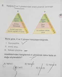 2. Aşağıda X ve Y yörelerindeki enerji piramidi verilmiştir. X Y ei Yoyo Akbaba, Yarasa Jaguar, Kaplan Antilop. Şempanze Deve, Yilan Sürekli yeşil kalan yayvan yapraklı ormanlar Su tutabilen bitkiler, çalılar Buna göre, X ve Y yöreleri karşılaştırıldığında