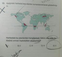 10. Aşağıdaki haritada bazı alanlar numaralandırılarak gösterilmiş- tir. X TV Haritadaki bu alanlardan hangilerinde hâkim olan bitki ör. tüsünü orman toplulukları oluşturmaz? 1 B) | C) III D) IV E) V Jadım