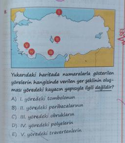 WASEL IV III Yukarıdaki haritada numaralarla gösterilen yörelerin hangisinde verilen yer şeklinin oluş- ması yöredeki kayacın yapısıyla ilgili değildir? A) 1. yöredeki tombolonun B) II. yöredeki peribacalarının C) III. yöredeki obrukların D) IV, yöredeki p